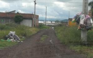 CAMINOS DE BASURA EN COLONIA EFREN CAPIZ, POR FALTA DE…