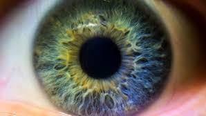 Ojo humano puede ver 'imágenes fantasma', según estudio