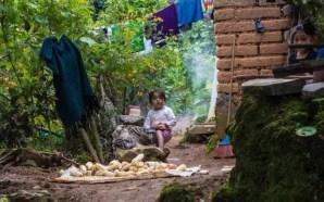 Desperdicios en México alimentarían a 7 millones de personas