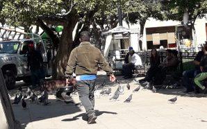 SEIS TRABAJADORES DEL DEPARTAMENTO DE ALUMBRADO DENUNCIAN DESPEDIDO INJUSTIFICADO