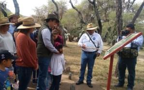 Arroyo Seco: zona arqueológica de pintura rupestre es visitada por…