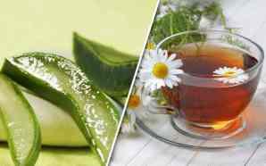 Remedios caseros para combatir la colitis