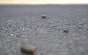HUBO DETONACIONES DE ARMA DE FUEGO EN LA COLONIA BELLAVISTA,…
