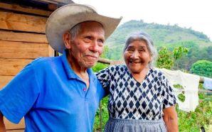 🔴#Estado 🔴GUANAJUATENSES MAYORES DE 65 AÑOS Y MÁS PODRÁN INSCRIBIRSE…
