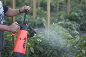organic liquid fertilizer for garden