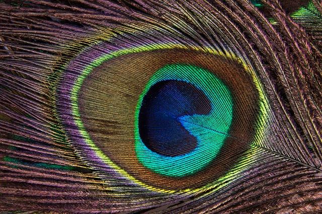 Visuaalisen tarinankerronnan ja markkinoinnin 13 mielenkiintoista linkkiä
