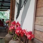 Salomavillagestay tree house lobby view in the heart of the Borneo jungle