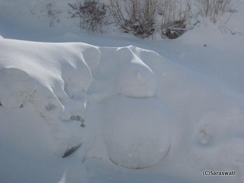 雪だるまにパウダースノー