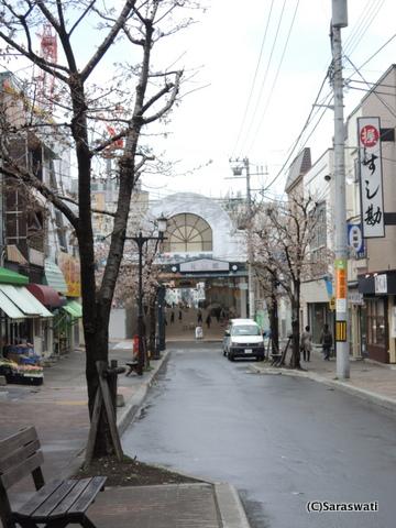 花園銀座商店街の桜
