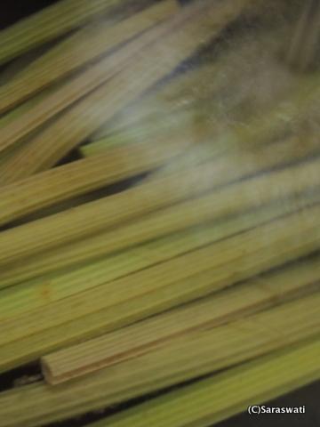 オタモイ産の蕗を冷水に浸す