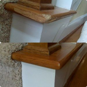 Pet damaged stairs repaired