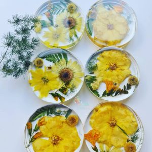 Flower Preservation Coasters