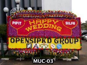 MUC-03 Bunga Papan Besar