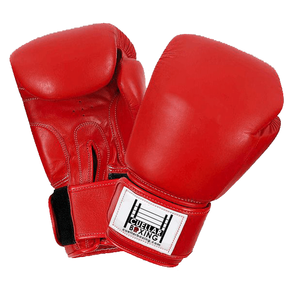 Boxing-Gloves-Transparent-PNG – Sal's Mexican Restaurants