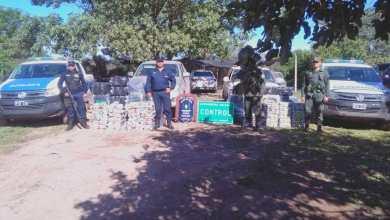 Photo of Decomisaron un cargamento de más de 800 kilos de hojas de coca