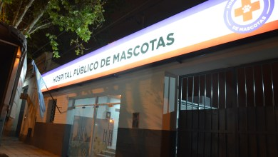 Photo of Veterinarios denunciaron precarización laboral en el Hospital de Mascotas