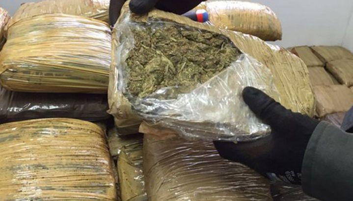 Gran cantidad de marihuana - Fuente: prensapolsal
