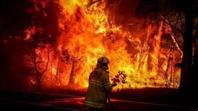 """Photo of «Estado de emergencia"""" en la capital de Australia por los incendios forestales"""
