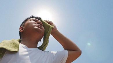Photo of ¿Qué cuidados se deben adoptar para realizar actividad física en el verano?