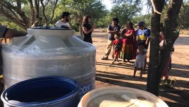 Photo of Emergencia sociosanitaria: denunciaron que en 14 comunidades originarias toman agua junto a los animales