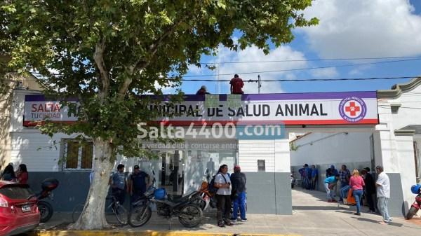 Manifestación en Hospital Animal