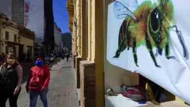 Photo of «Museos Conectados» sale a la calle