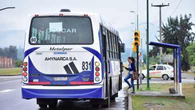 Photo of Salteños podrán acceder a recorridos y horarios de los colectivos de Saeta