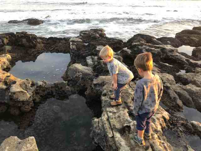 two little boys peering into a tide pool