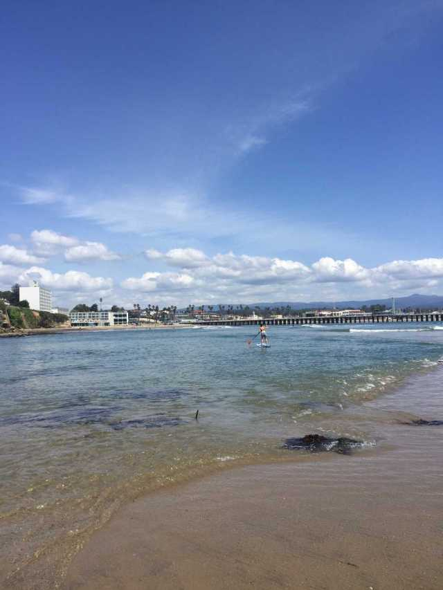 paddle boarder paddling in clear water with the beach and the wharf in the background in santa cruz.