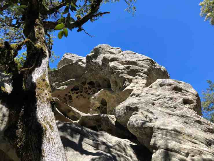 Interesting rock formation in Castle Rock State Park. One of the best places to hike in the Santa Cruz Mountains