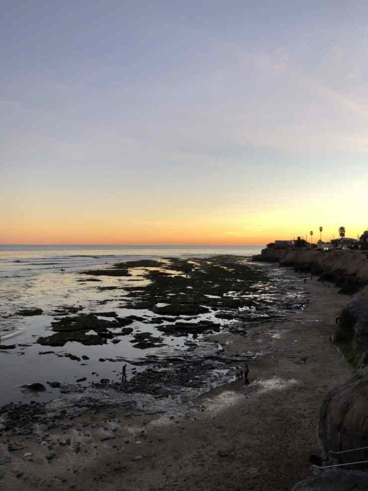 beach sunset at low tide with lots of exposed tide pools and palm trees along the cliff.
