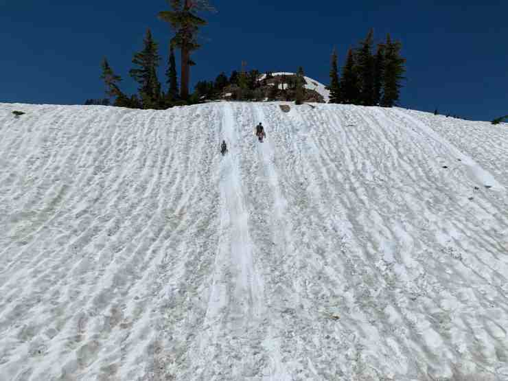 A man and a boy sledding down a snowy hill in shorts at Lassen National Park