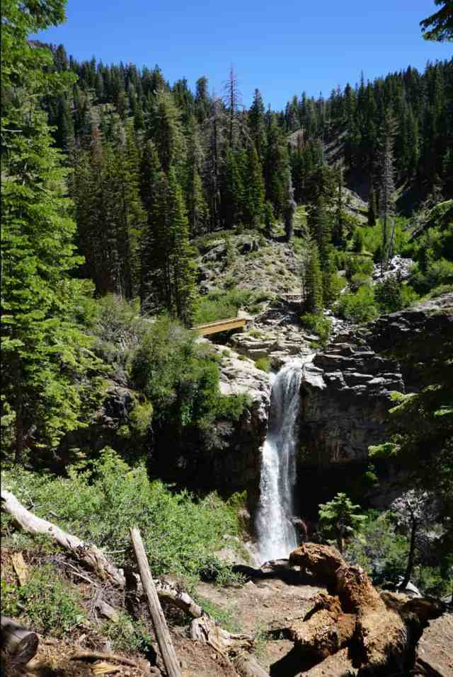 Mill Creek Falls in Lassen National Park. Tall waterfall surrounded by pine trees.