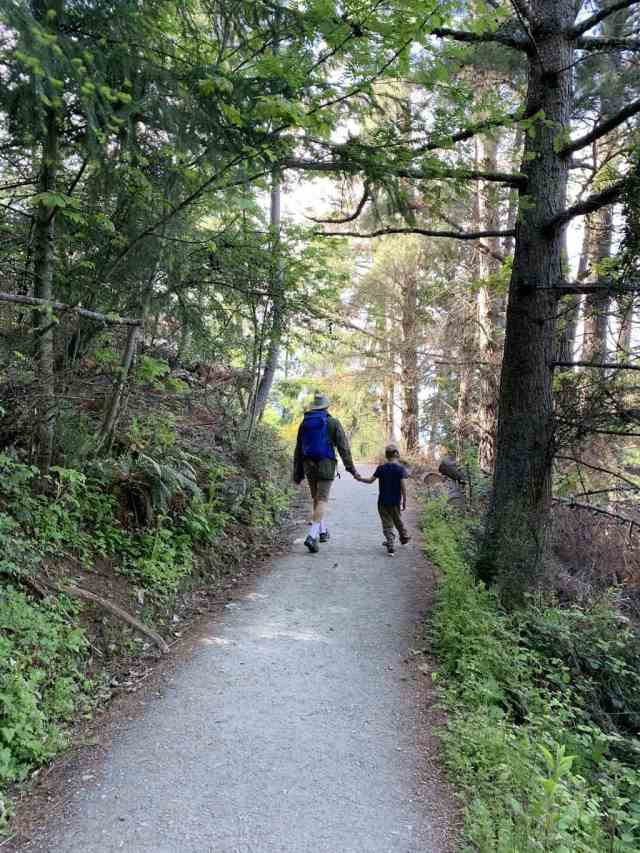 The Queenstown Hill Walk is one of the best short hikes in New Zealand for big views without the long distance. Boy and day walking on a trail in the forest