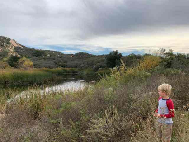 Daley Ranch is a good longer hike for kids in san diego