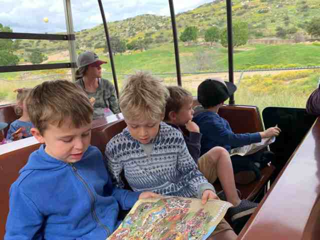 boys riding Africa Tram at Wild Animal Park