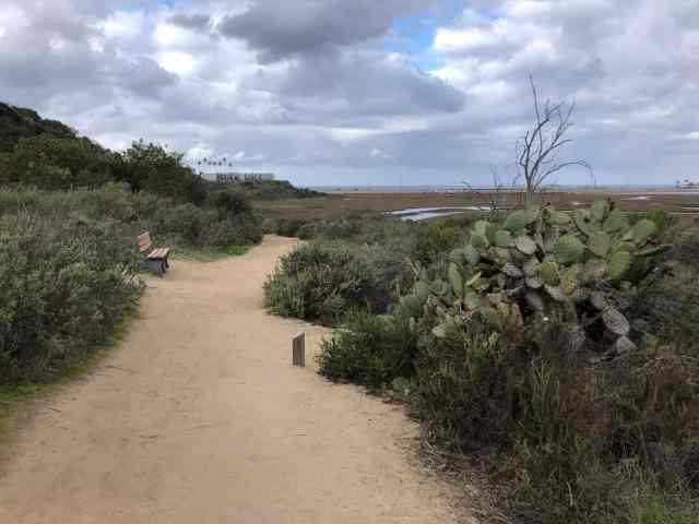 Trail along San Elijo Lagoon in San Diego