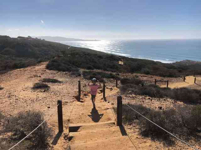 torrey pines is one of the best hikes in san diego for kids