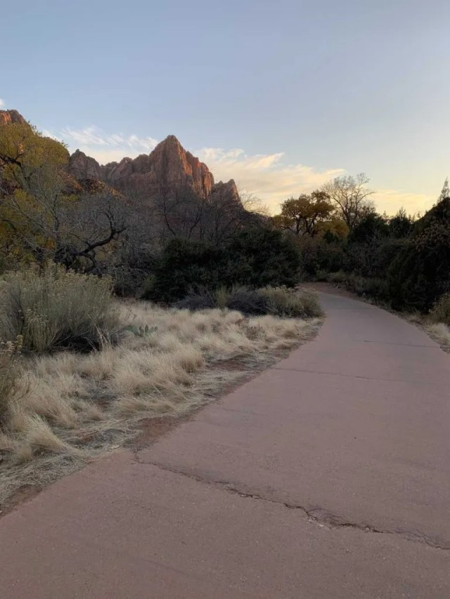bike trail in zion national park