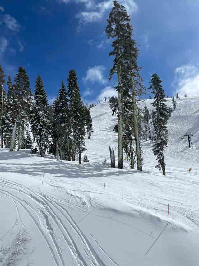 sugar bowl is one of the best ski resorts in lake tahoe for kids