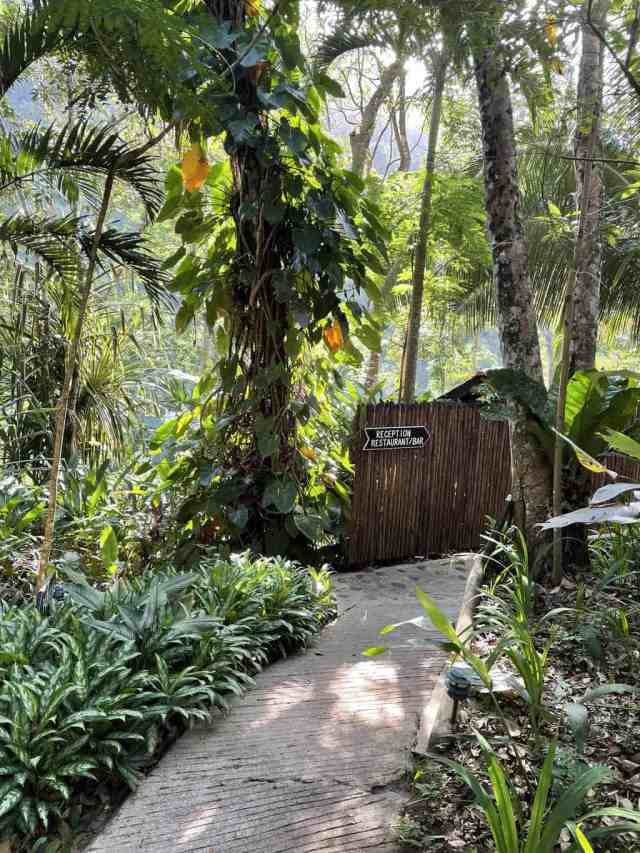 black rock lodge near san ignacio belize is the perfect place to stay in belize with kids