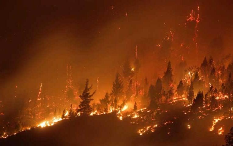 #Ecocidio El ministro de ambiente presentó una denuncia penal para que se investigue los responsables Las localidades afectadas por los incendios son Lago Puelo, El Hoyo, El Maitén y Cholila.