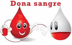 La Asociación de Donantes Solidarios Rh Negativos realizará un curso sobre donación voluntaria de sangre