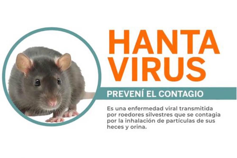 Salud Pública recuerda medidas para prevenir infección por hantavirus