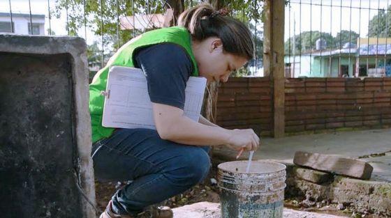 Salud Pública trabaja para detectar reservorios de Aedes aegypti