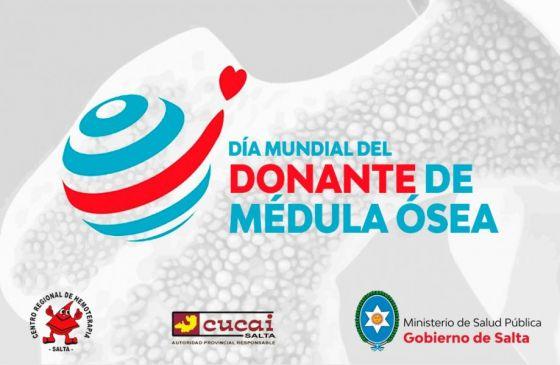 Se conmemora hoy el Día Mundial del Donante de Médula Ósea