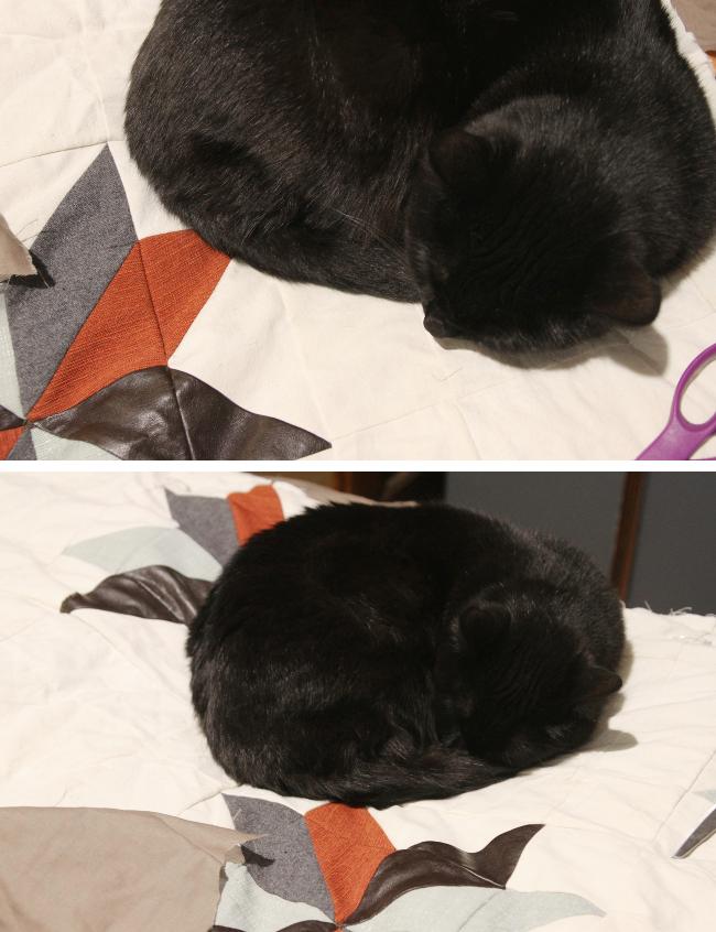 mishka quilt