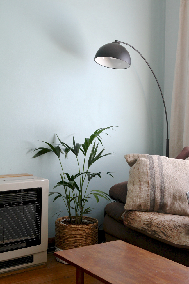 Black arc lamp and palm