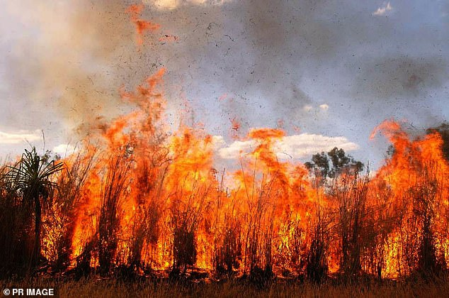 For northern Australia the peak bushfire period is during the dry season, which is generally throughout winter and spring