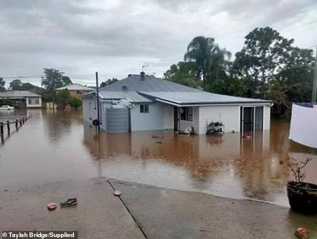 The recent floods across different parts of NSW saw water quality altered dramatically, with fridges, plastic and even cows mixed in with oyster produce, making them unable to be sold in bulk to key suppliers